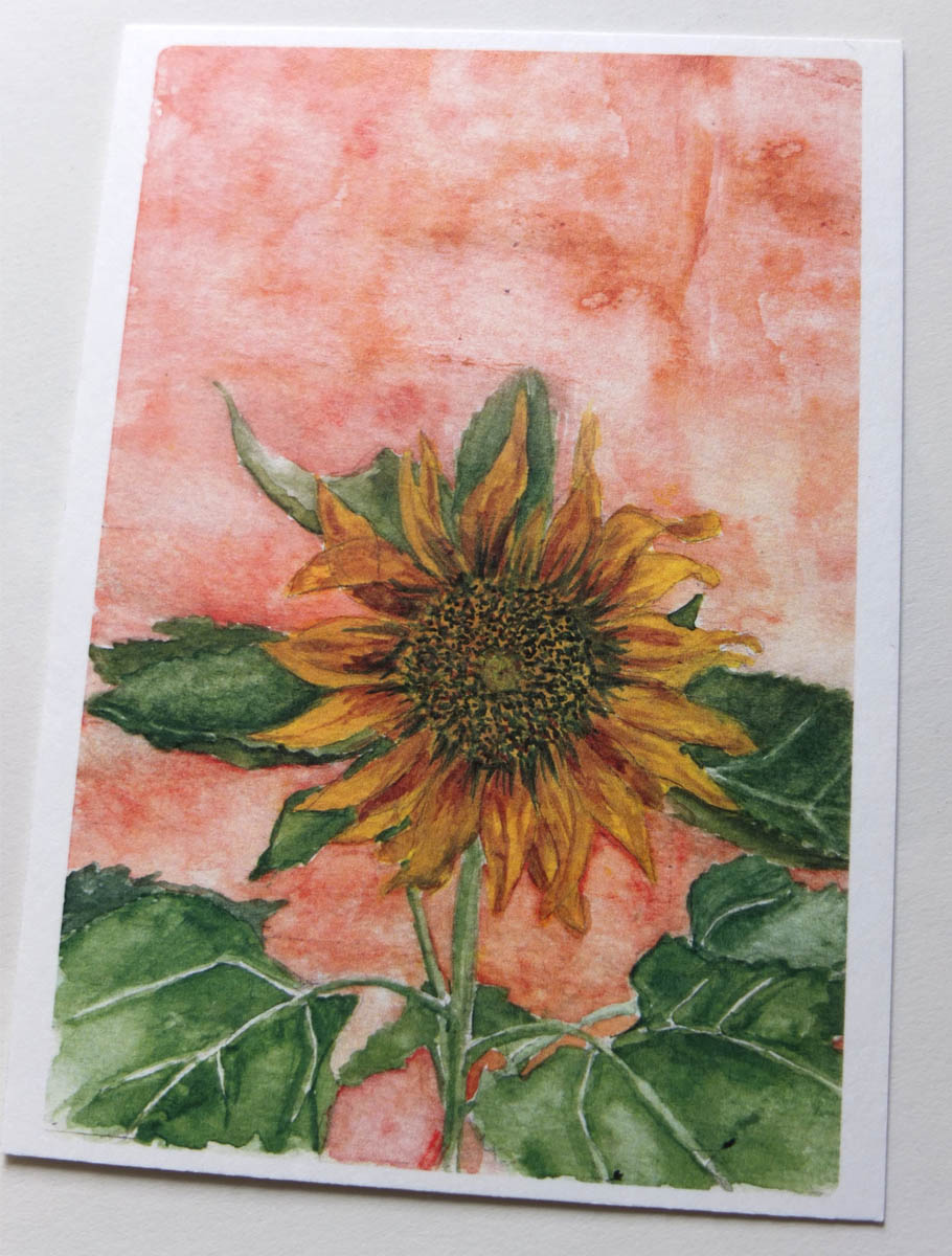 postkaart aquarel zonnebloem